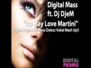 Digital Mass ft. Dj DjeM - Ice Hay Love Martini (Digital Project & Milana Delezz Vokal Mash Up!)