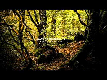 [MM] - Звуки Природы - Релаксация // Sounds of Nature - Relaxation