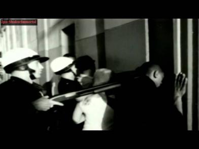 Площадь свободы новости видео